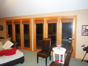 Living room windows/doors